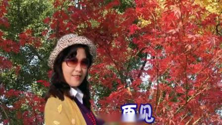 苏州天平山--赏红枫(修改小)