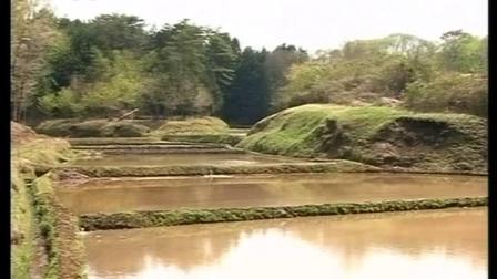 日本NHK 自然百景-栃木県喜連川