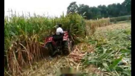 圣鸿玉米秸秆收割机玉米秸秆割晒机田间调试视频