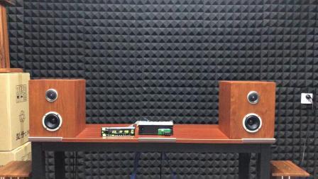 建伍DSP-BT305主动三分频现场录音-2