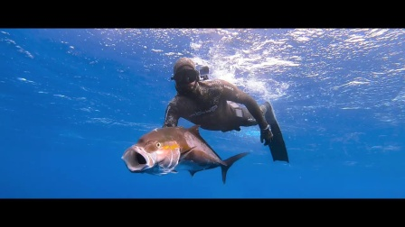 加那利群岛渔猎自由潜