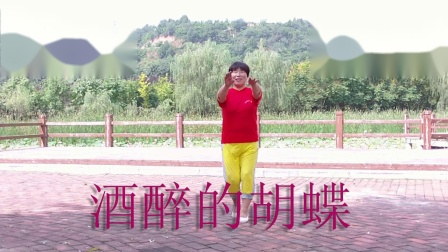 杨凌下阳村广场舞酒醉的胡蝶