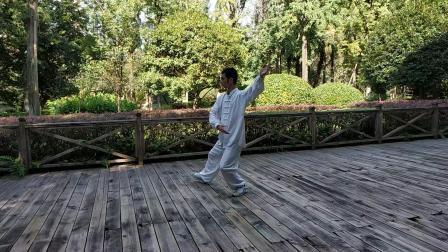 杨氏太极拳爱好者习练