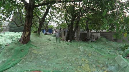 2019年:拆迁中的铁桥南村(2019年08月18日)