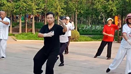 杨氏85拳晨练