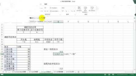 2-4:SUMIF通配符应用.wmv