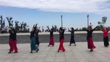 哈尔滨市金色阳光广场舞《草原情》团队表演-录制-王金丽