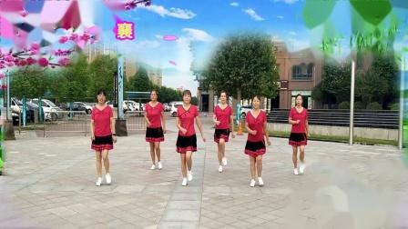 襄城广场舞步子舞月下情缘
