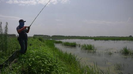 渔猎路亚雷强视频 抽杆回鱼动作