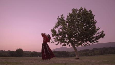 飞宇稳定器 | 电影调色+《东宫》配乐,带你感受古典舞蹈的柔情美