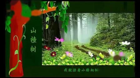 歌曲《山楂树》