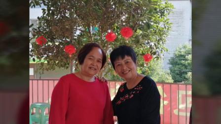 蟠龙公社初中七一级二班2019年同学会相册