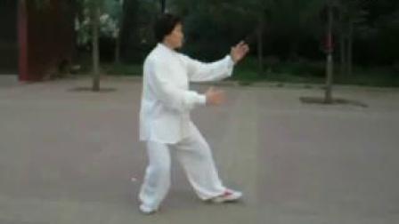 潍坊滨海丛玉俊老师二十四式简化太极拳