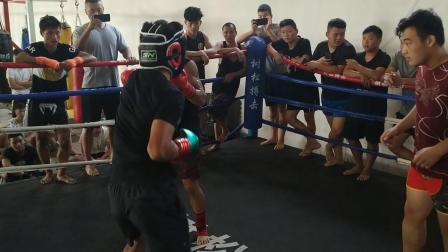 绿拳拳击3