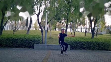 传统杨氏二十八势