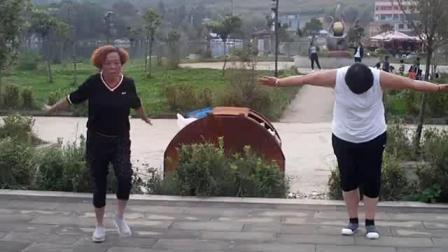 龙凤社区 舞蹈队巜格桑花》