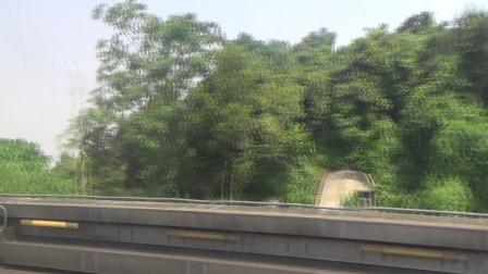 港鐵東鐵線MLR E8 208行走片段 上水至落馬洲
