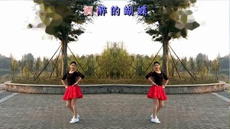 梅子广场舞《酒醉的蝴蝶》
