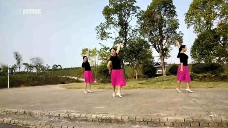 小英子广场舞《桃花缘》