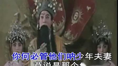 豫剧伴奏《打金枝》唤声亲翁郭子仪 高清(480P)