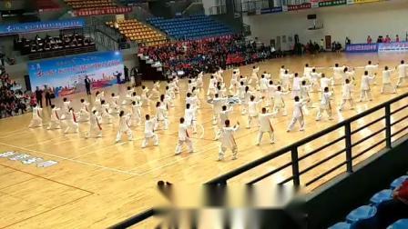 """""""红太阳""""杯2019年全国老年气排球之乡交流活动(背面)"""