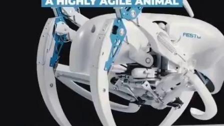 蛛蛛机器人