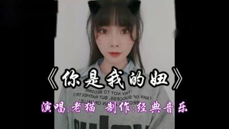 广场舞《你是我的妞》演唱:老猫