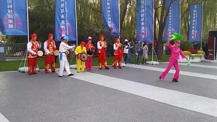 中关村舞蹈节开幕式巡游展演(14)20191019