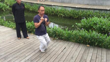 心意六合拳上海长寿公园小刘野马奔槽加蛇形窜拳