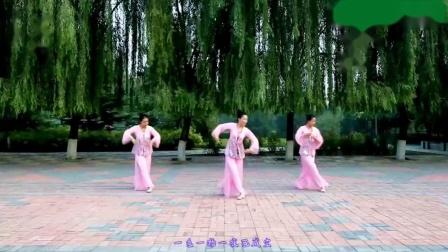 云裳广场舞《忘尘谷》原创唯美古典舞附教学_超清