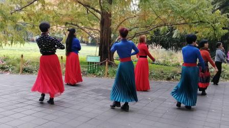 紫竹院魅力朵朵舞蹈队广场舞《康巴情》
