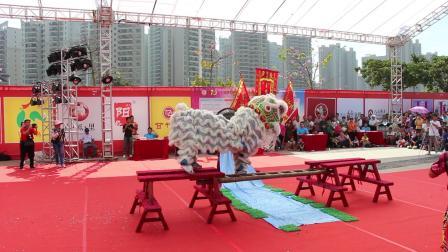 2019年清远市第一届狮王争霸赛  传统狮9 佛冈县龙山文化站新天地醒狮团 MVI_6270