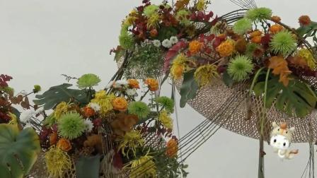 上海第十三届中国菊花展览会