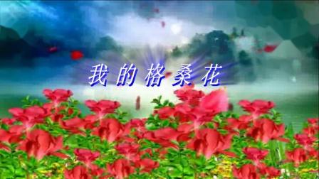 槎滘晨运队广场舞表演《我的格桑花》