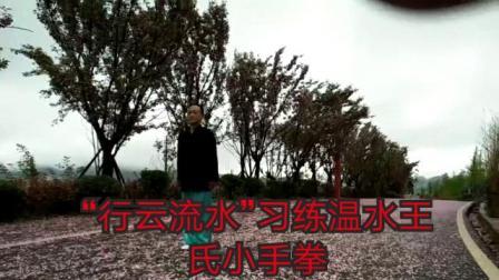 """""""行云流水""""习练温水王氏小手拳"""