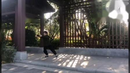 传统杨氏太极拳循环套路