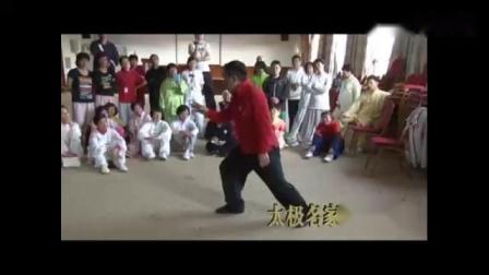 爱剪辑-傅清泉精讲杨氏太极拳的身法_标清