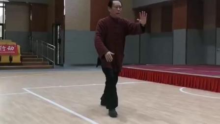 赵幼斌讲解讲八十五式第一段视频