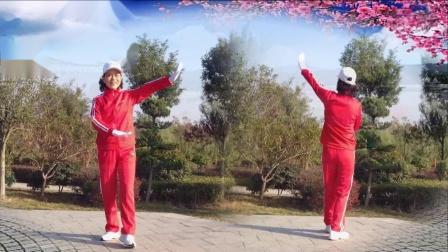 襄阳广场舞健身操第八套第8节《离离原上草》竹子演示