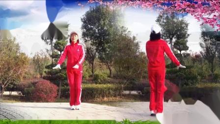 襄阳广场舞健身操第八套第12节《阿拉伯之夜》竹子演示