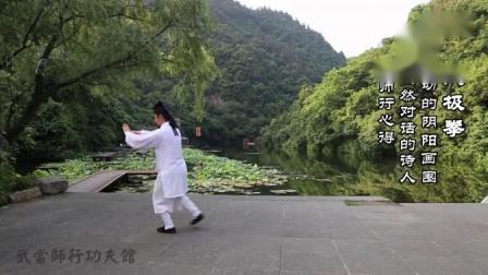 武当 太极13式(陈师行)