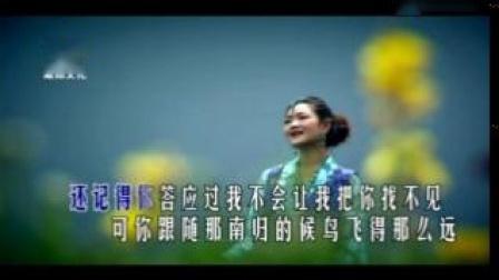 降央卓玛-西海情歌 (KTV版)(标清)