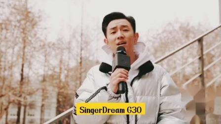 你离歌手只差一支SINGERDREAM G30,vx:SZ_SINGERDREAM