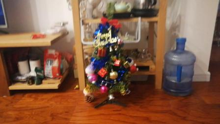 圣诞树上的装饰,祝大家圣诞快乐!