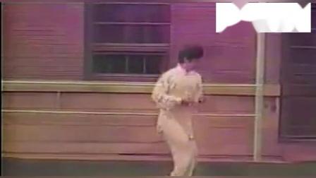 【漾太极】洪均生著名弟子、洪传陈式太极拳名家张联恩先生早年拍摄的太极拳