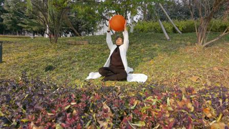 泰安无极球太极球