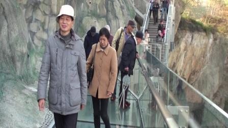 2019年12月13日上海市青浦区沈巷中学退休人员松江一日游[第一集](共2集)