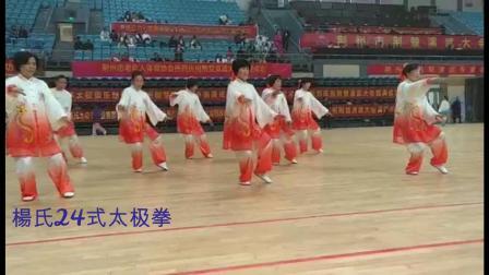 松滋玉岭拳队在荆楚演武大会上竞赛视频