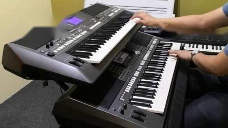 雅玛哈双电子琴演奏2