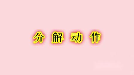 少林五形八法拳(108式)29